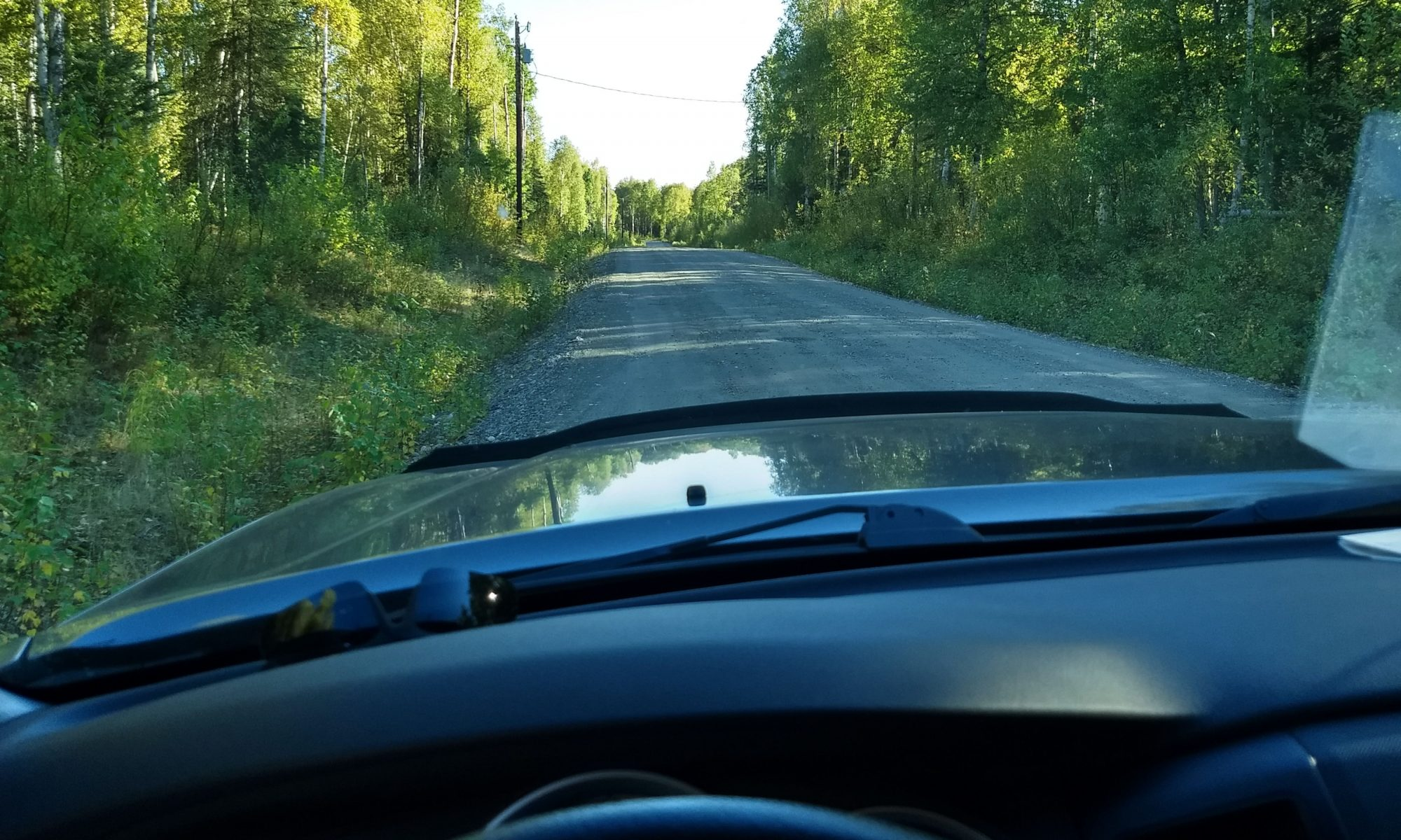 View through a vehicle dash looking at a forest in Alaska