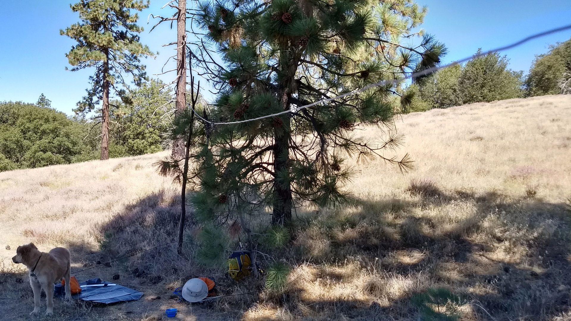 Amateur radio portable dipole