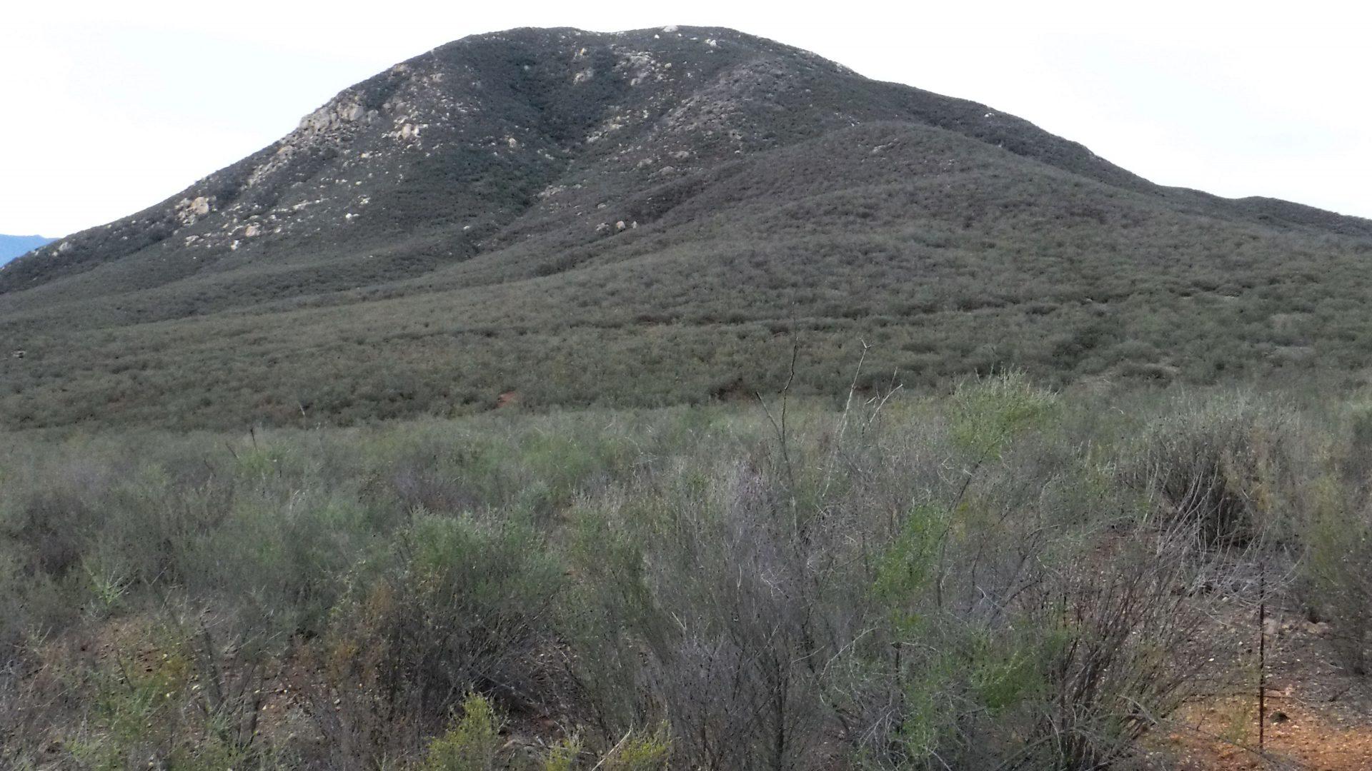 View of Black Mountain