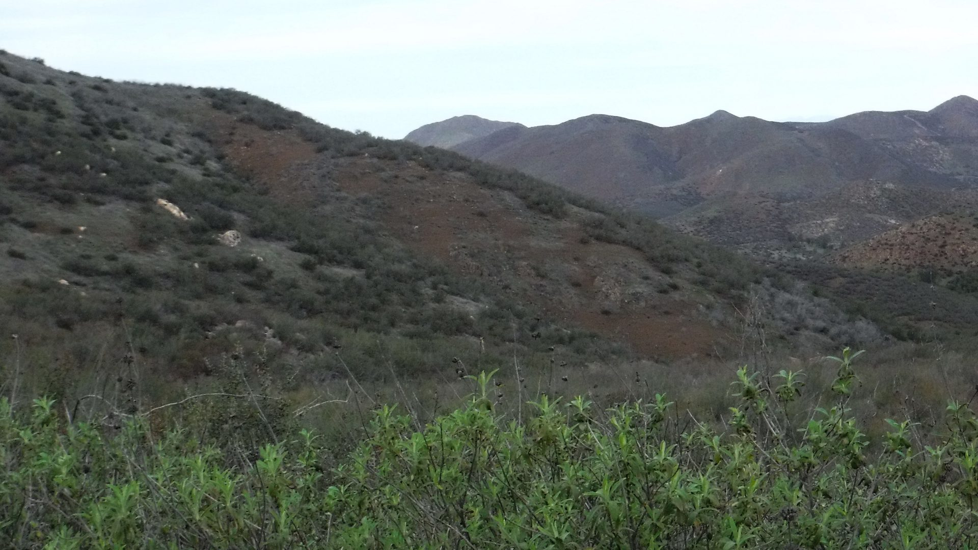 View of the side of a hill